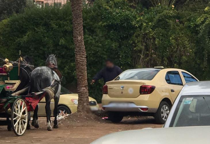 استياء من سلوكات ومشاحنات سائقي سيارات أجرة قرب حديقة