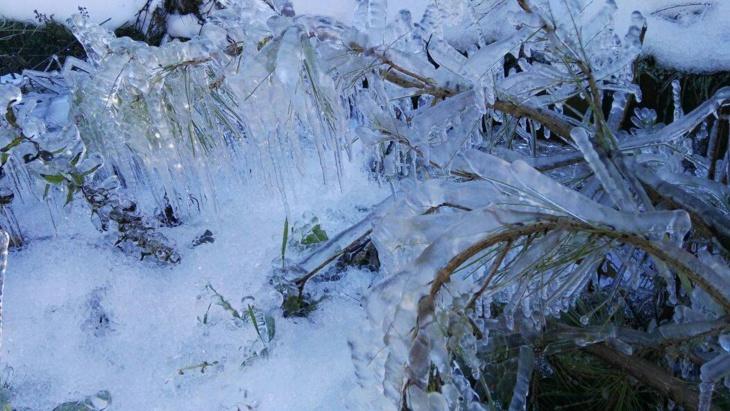 أجواء باردة وصقيع بالمرتفعات وعواصف بالسواحل في توقعات الطقس اليوم الثلاثاء