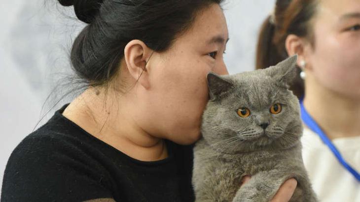 لهذا السبب أدمن شباب الصين على شمّ القطط