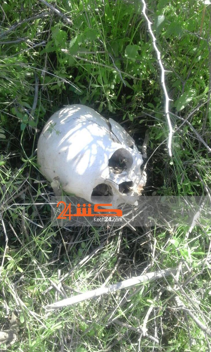 بالصور: هذه هي الجمجمة الآدمية التي استنفرت السلطات بمراكش