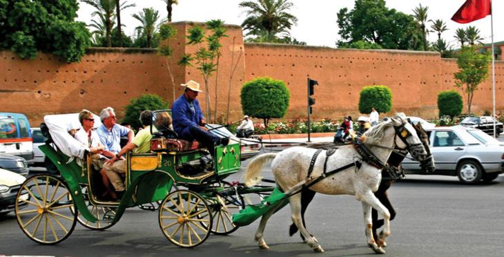 صحيفة بولونية: هكذا تحول المغرب لوجهة مرجعية في السياحة العالمية