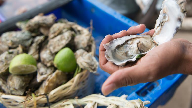 تقرير يُشرّح واقع زراعة الأحياء المائية في المغرب