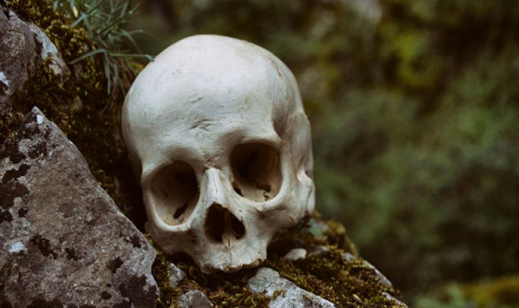 فيديو... مخ بشري لم يتحلل منذ 2600 عام