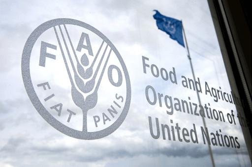 انتخاب المغرب عضوا في مجلس إدارة برنامج الغذاء العالمي
