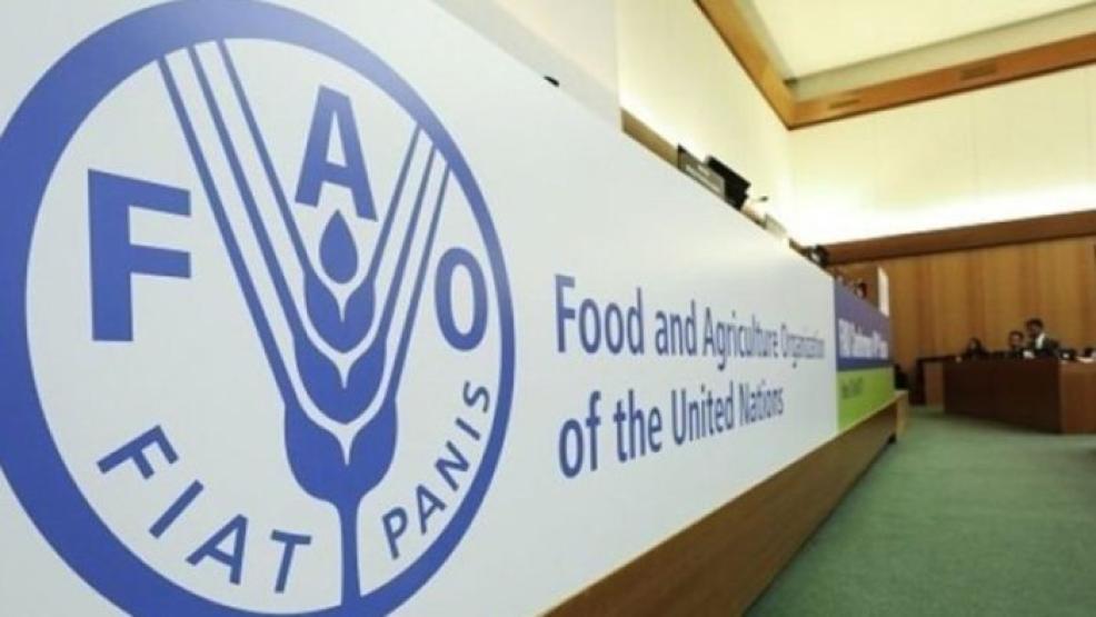 انتخاب المغرب منسقا للبلدان الإفريقية في مجلس إدارة برنامج الغذاء العالمي