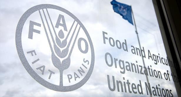 """تقرير: مؤشر """"الفاو"""" لأسعار الأغذية يرتفع للشهر التاسع على التوالي"""