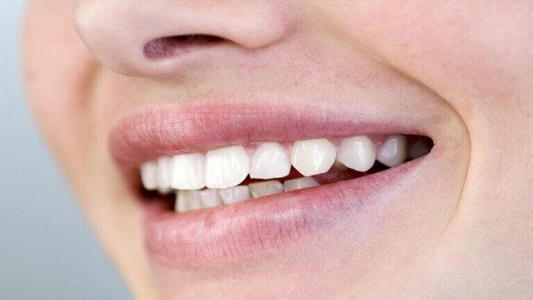 العلماء يطوّرون علاجا يمكنه تجديد الأسنان المفقودة